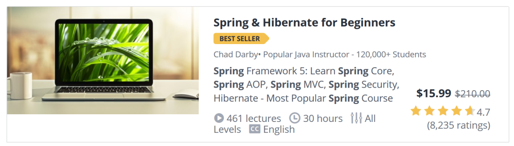 Spring and Hibernate for Beginners Udemy details